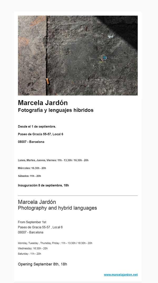 Fotografía y lenguajes híbridos