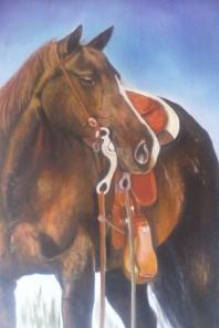 caballo 12