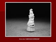 De la serie Libertad de expresión. foto 3