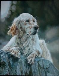 El perro sobre la  piedra