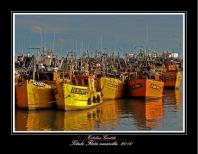 Flota amarilla