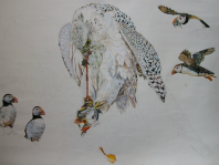 Gyrfalcon dovouring a Puffin (Step 6)
