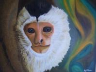 Misterios Capuchino
