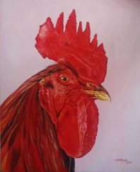 Red Cock