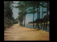 rio liz landscape