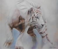 Tigre Siberiano II