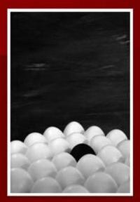 Serie Huevos. Foto. Diferente