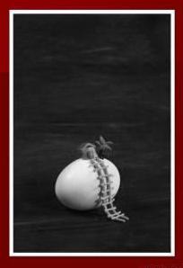 Serie Huevos. Foto. Paisaje cubano